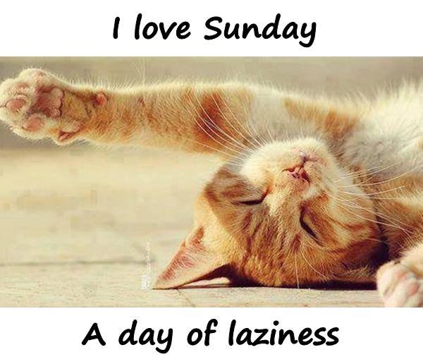I love Sunday. A day of laziness.