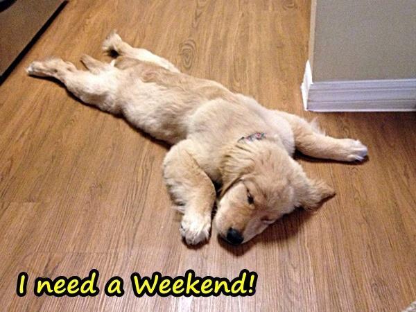I need a Weekend!