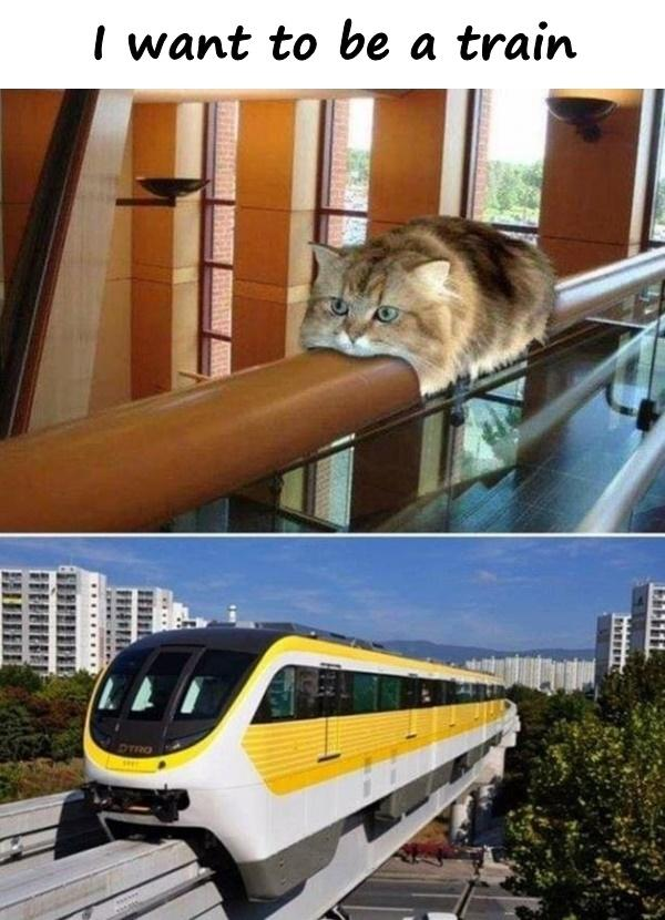 I want to be a train