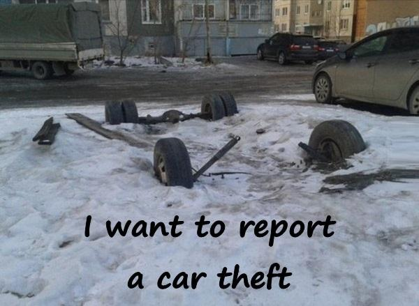 I want to report a car theft