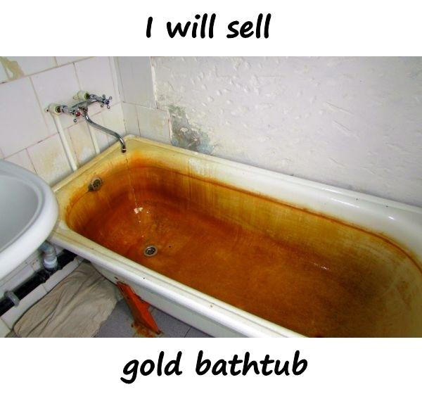 I will sell - gold bathtub