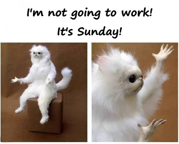 I'm not going to work! It's Sunday!