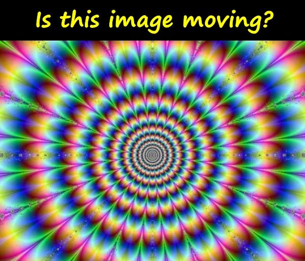 Is this image moving?