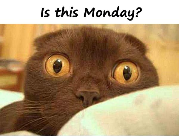 Is this Monday?