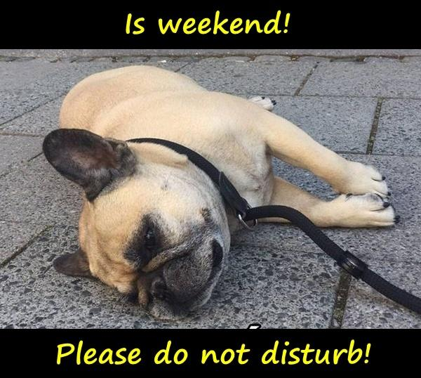 Ist Wochenende! Please do not disturb!