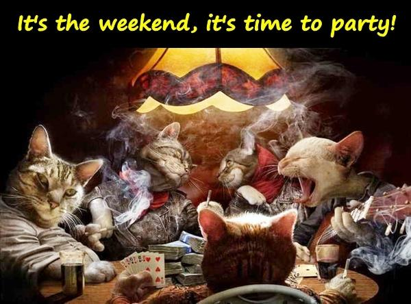 It's the weekend, it's time to party!