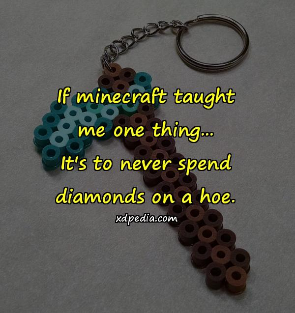 If minecraft taught me one thing... It's to never spend diamonds on a hoe.