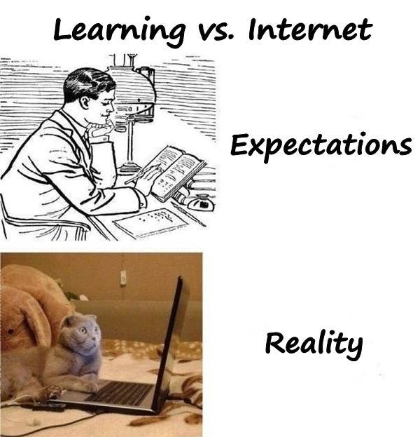 Learning vs. Internet