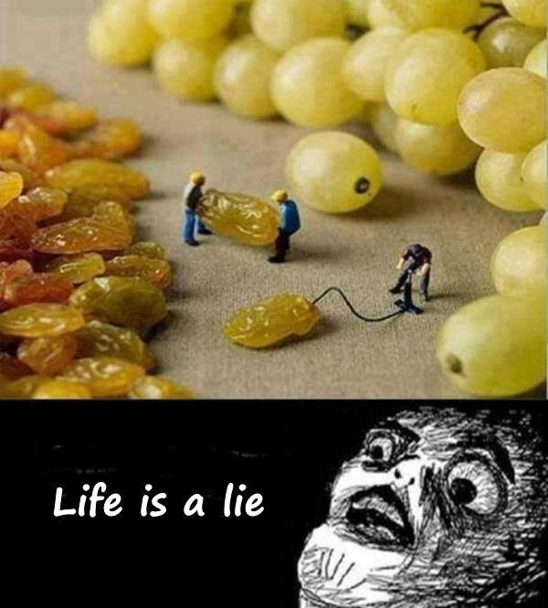 Life is a lie