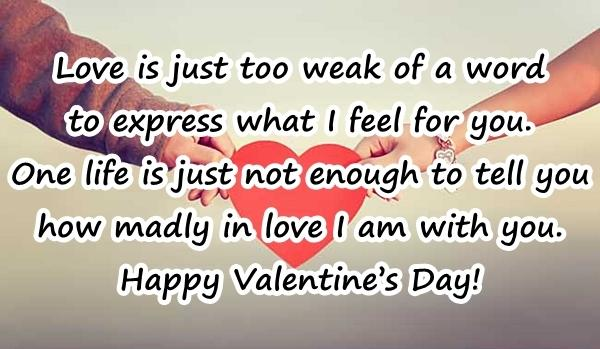 Love is just too weak of a word to express what I feel for you. One life is just not enough to tell you how madly in love I am with you. Happy Valentines Day!