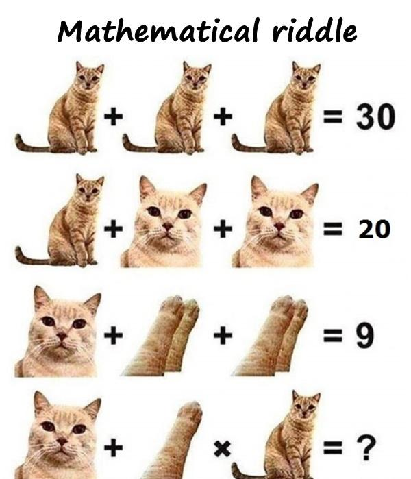 Mathematical riddle
