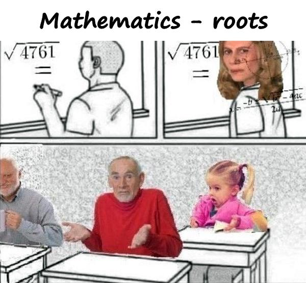 Mathematics - roots