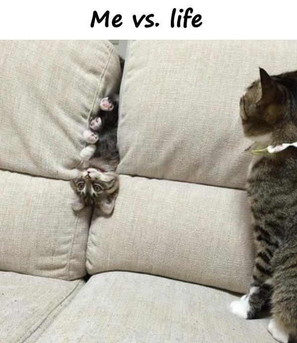 Me vs. life