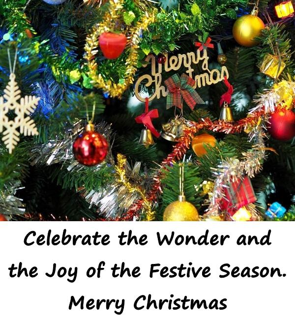Celebrate the Wonder and the Joy of the Festive Season. Merry Christmas
