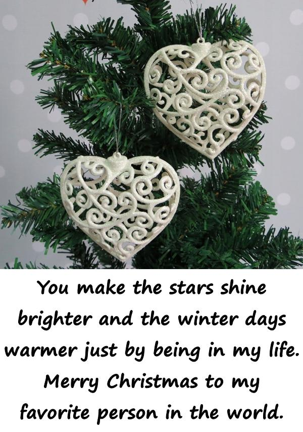 You make the stars shine brighter and the winter days warmer just by being in my life. Merry Christmas to my favorite person in the world.