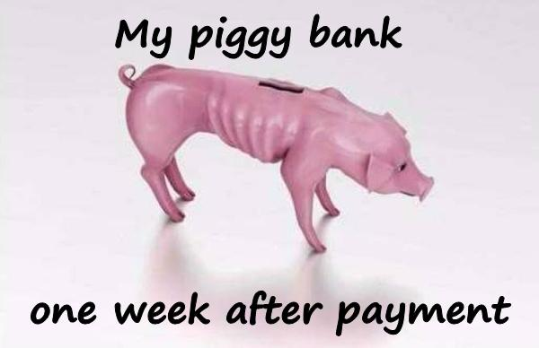 My piggy bank, one week after payment