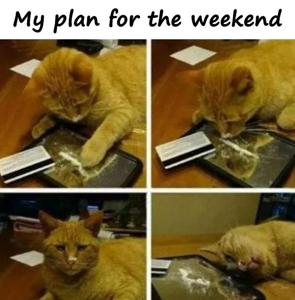 My plan for the weekend
