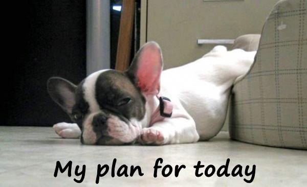 My plan for today