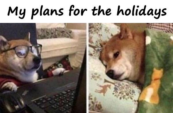 My plans for the holidays