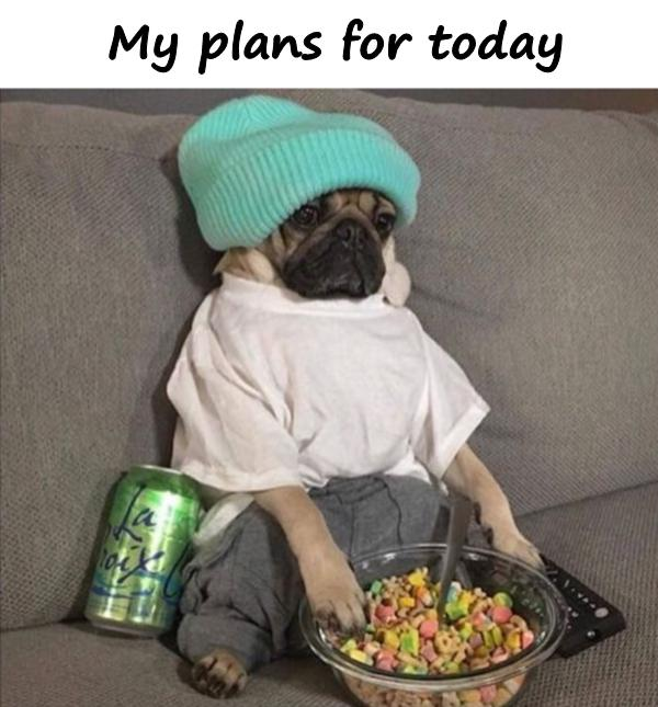 My plans for today