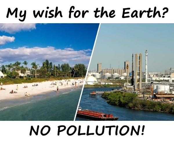 My wish for the Earth? NO POLLUTION!