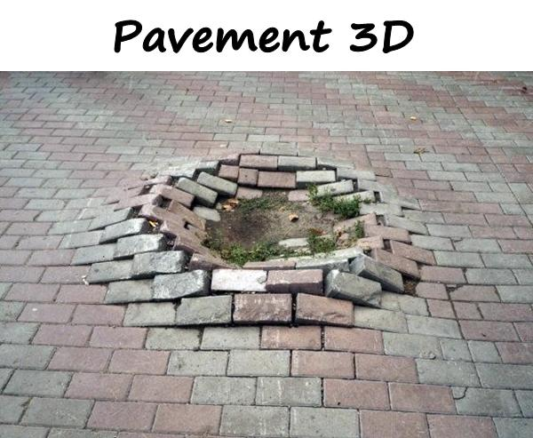 Pavement 3D