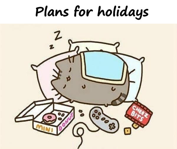 Plans for holidays