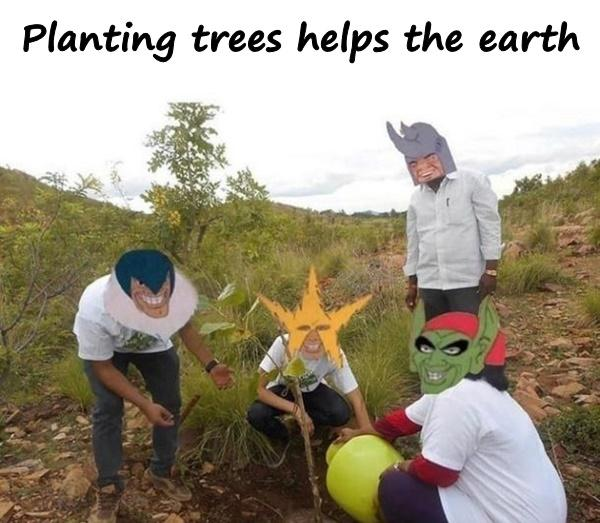 Planting trees helps the earth