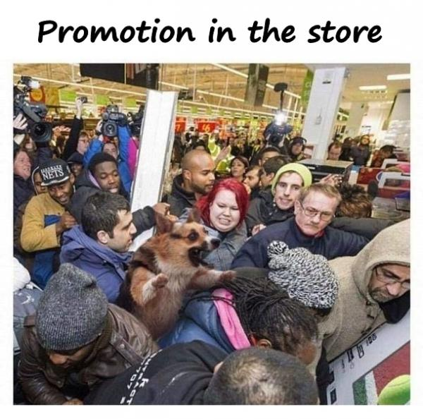 Promotion in the store