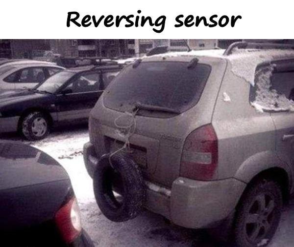 Reversing sensor