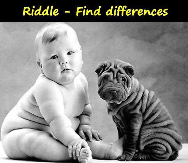 Riddle - Find differences