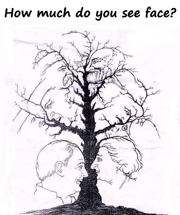 Riddle: How much do you see face?