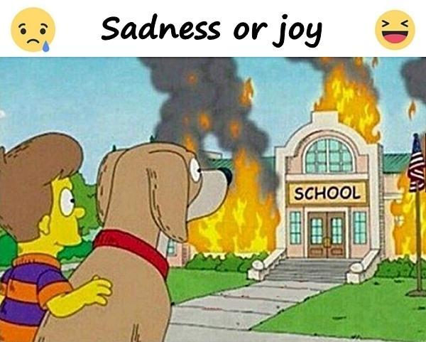 Sadness or joy