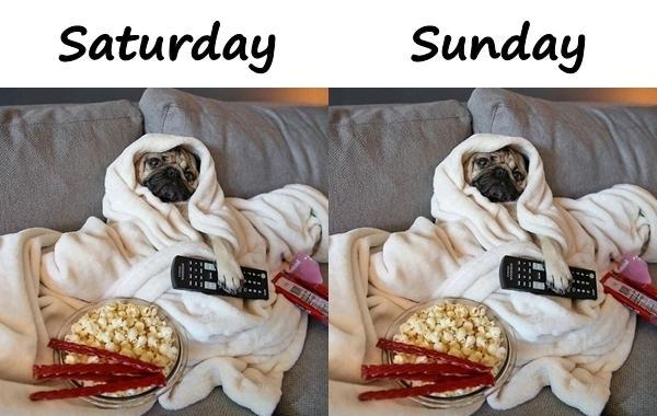 Saturday and Sunday