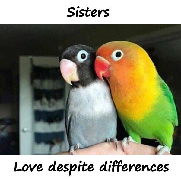 Sister. Love despite differences.