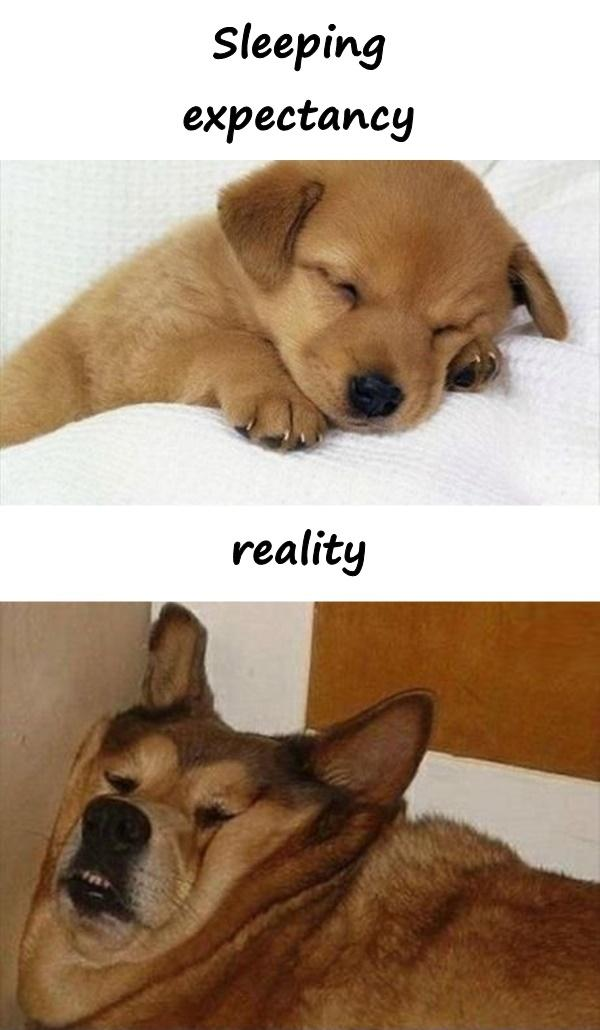 Sleeping - expectation and reality