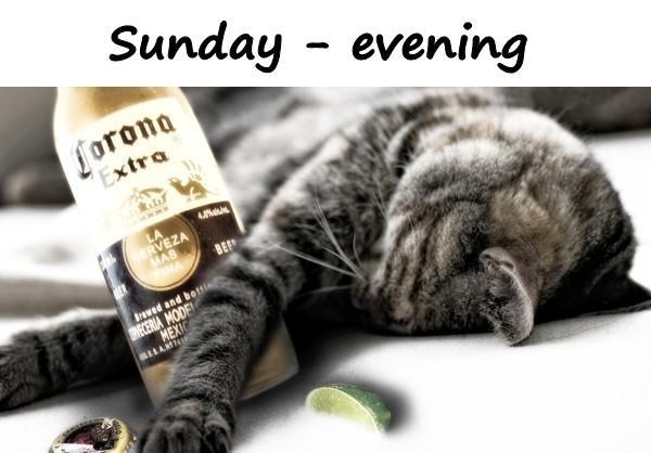 Sunday - evening
