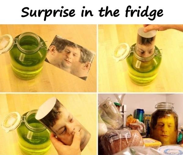 Surprise in the fridge