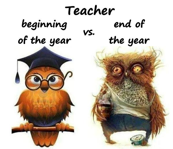 Teacher - beginning of the year vs. end of the year