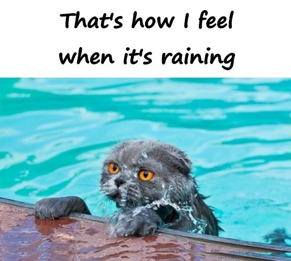 That's how I feel when it's raining