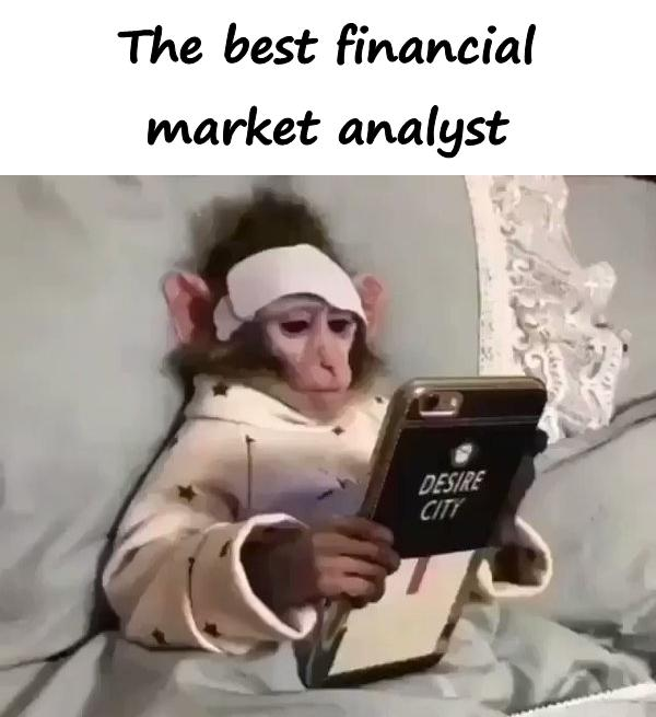 The best financial market analyst