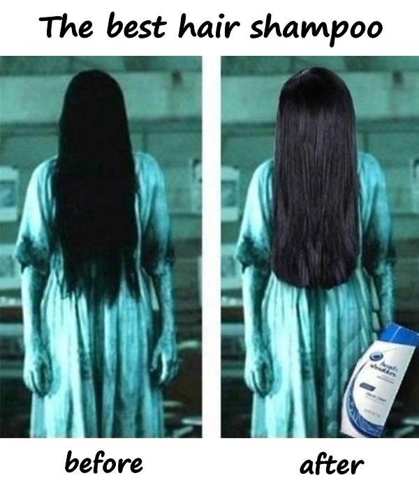 The best hair shampoo