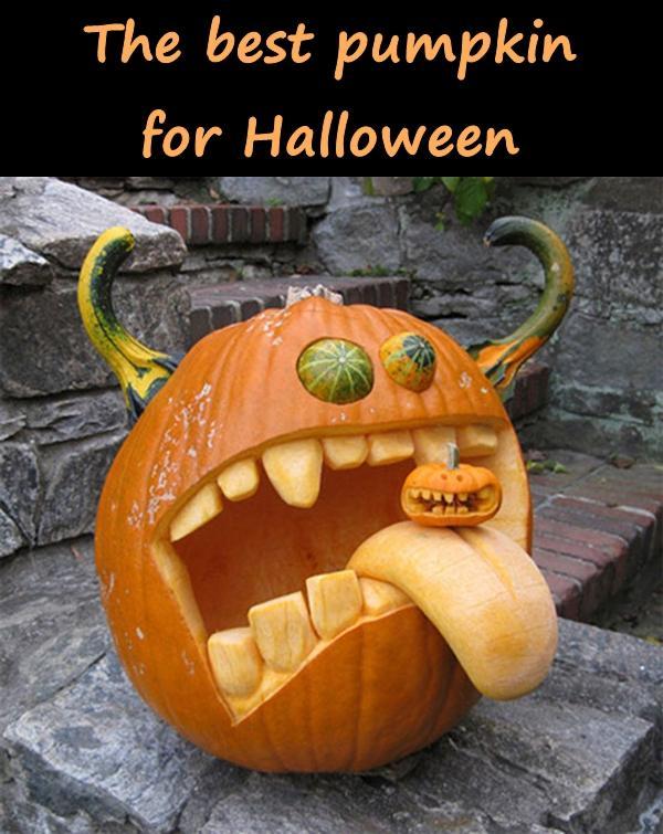 The best pumpkin for Halloween