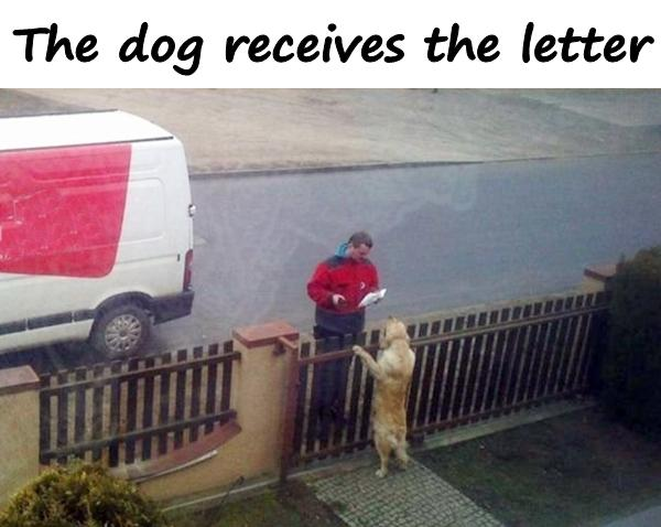 The dog receives the letter
