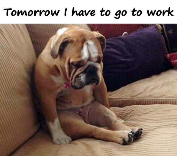 Tomorrow I have to go to work