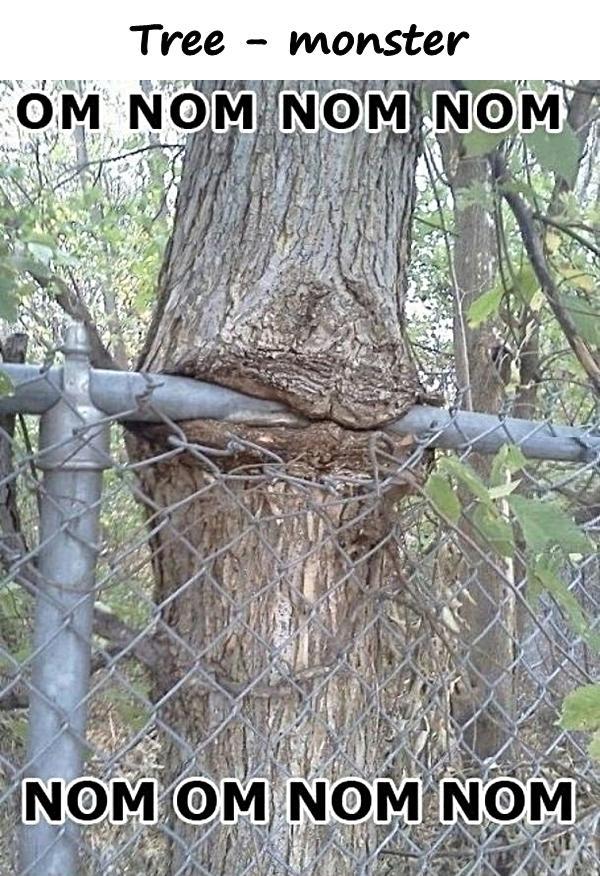 Tree - monster