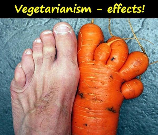Vegetarianism - effects!