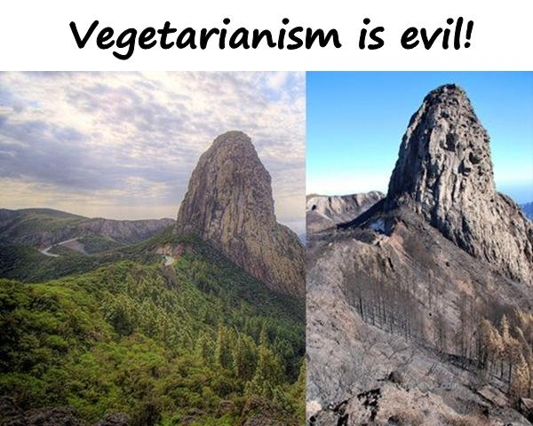 Vegetarianism is evil!