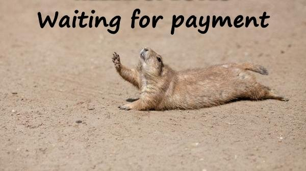 Waiting for payment