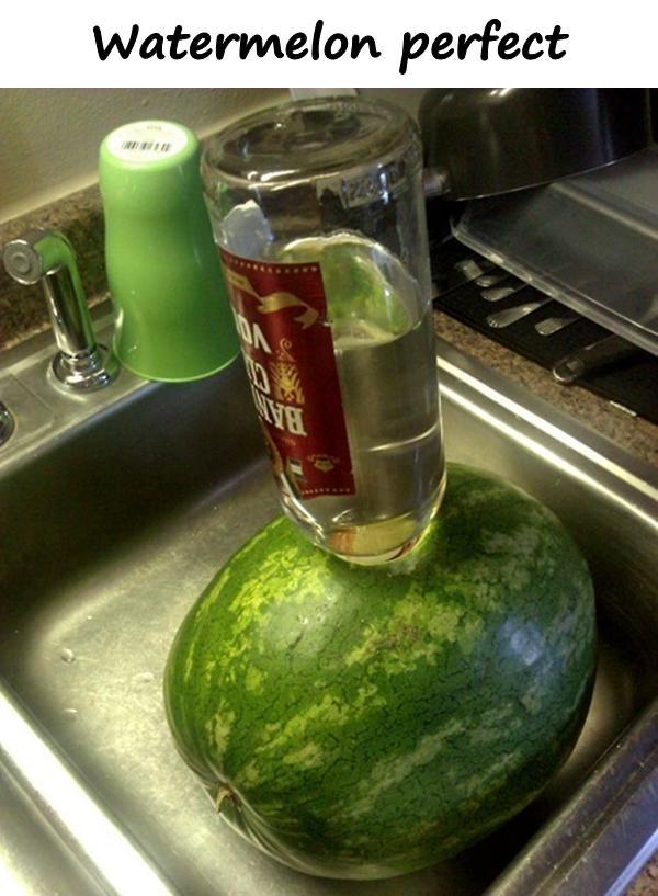 Watermelon perfect